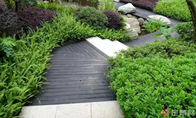 园林植物配置的方式方法