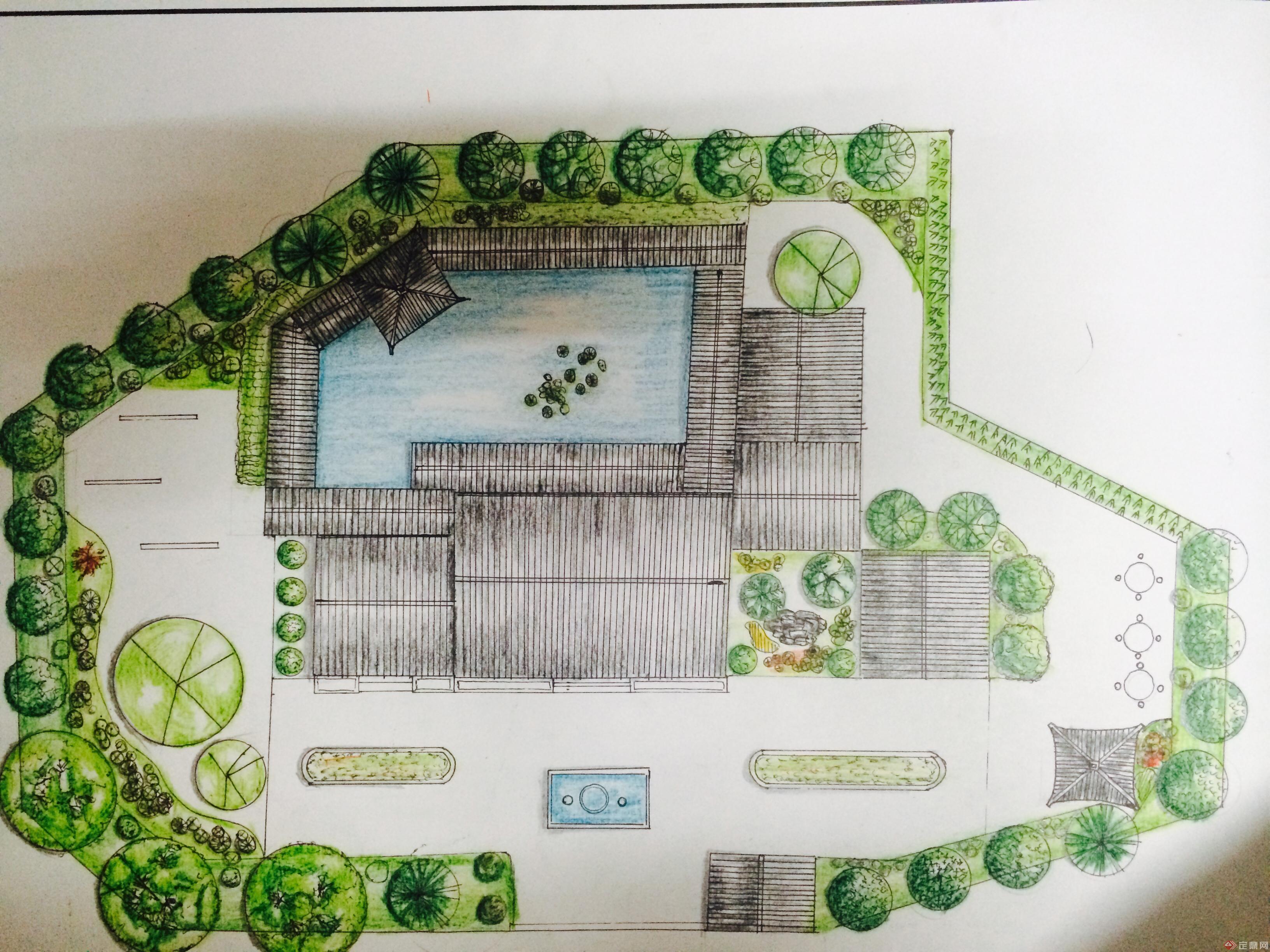 植物平面图手绘教程
