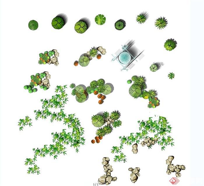某园林景观植物设计ps素材