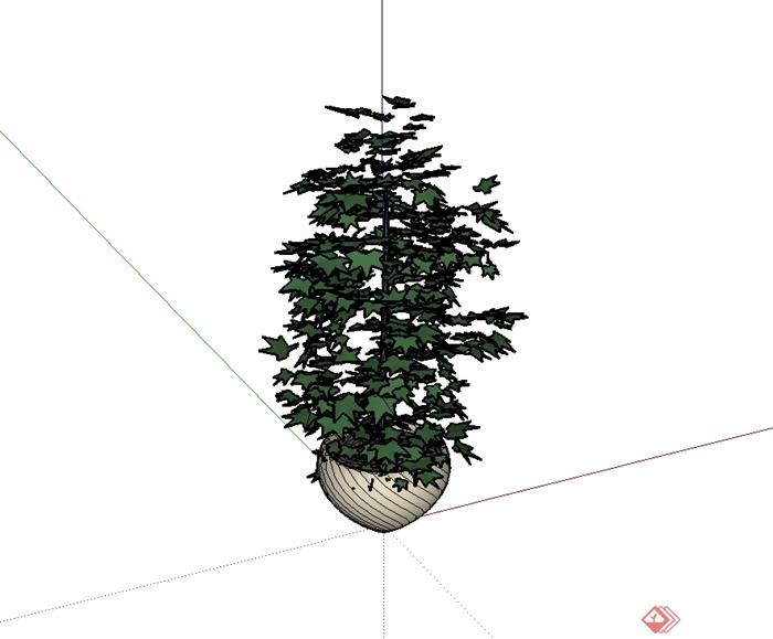 某现代风格花钵盆栽植物设计su模型[原创]