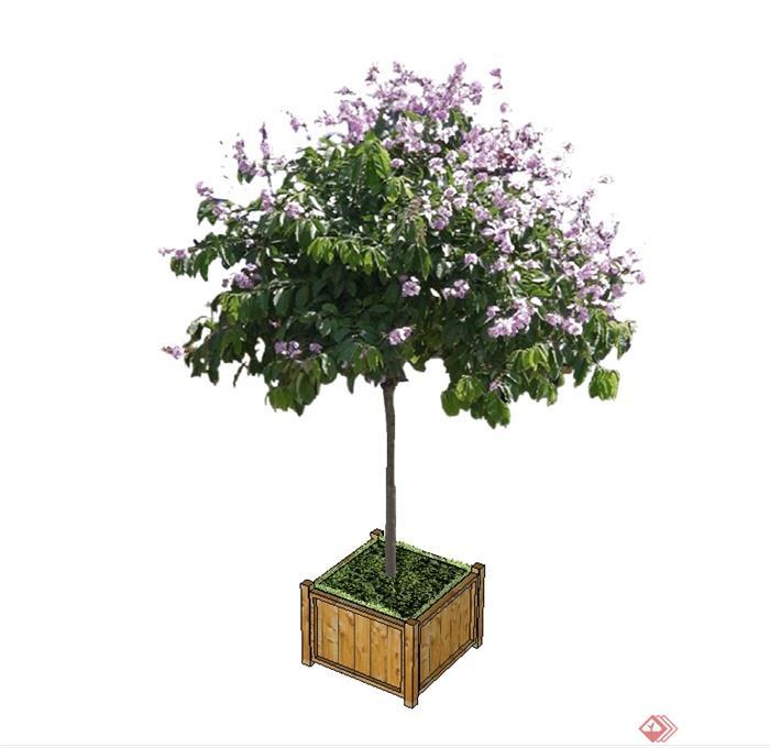 现代风格木质树箱设计su模型[原创]