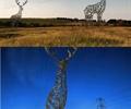 动物雕塑,雕塑小品,雕塑模型