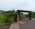 公园景观,防腐木铺地
