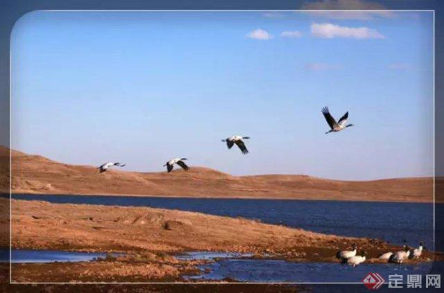 昭通告诉你,是棕色的山包间流过湛青色的河,是黑白相间的黑颈鹤张开翅