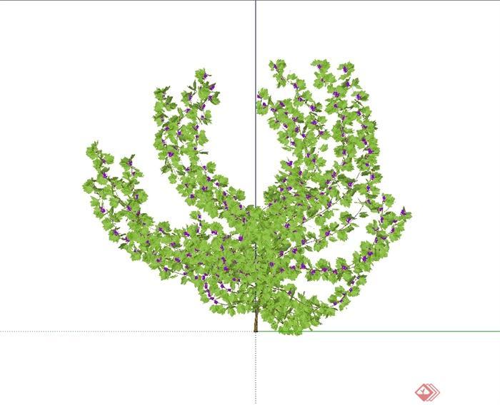 藤蔓及垂直植物绿化设计su模型(1)