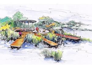 湿地公园景观手绘效果图