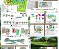 公园景观,公园,学生作业
