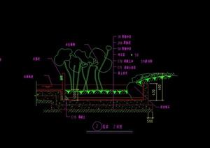驳岸设计CAD施工图