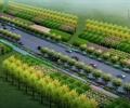 道路,道路景觀,道路綠化