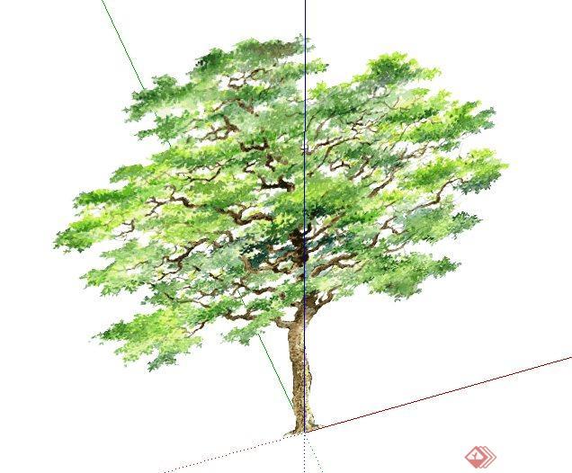 2d树木手绘植物su素材模型[原创]