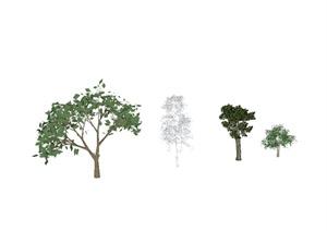 某四棵景观树木设计SU(草图大师)模型