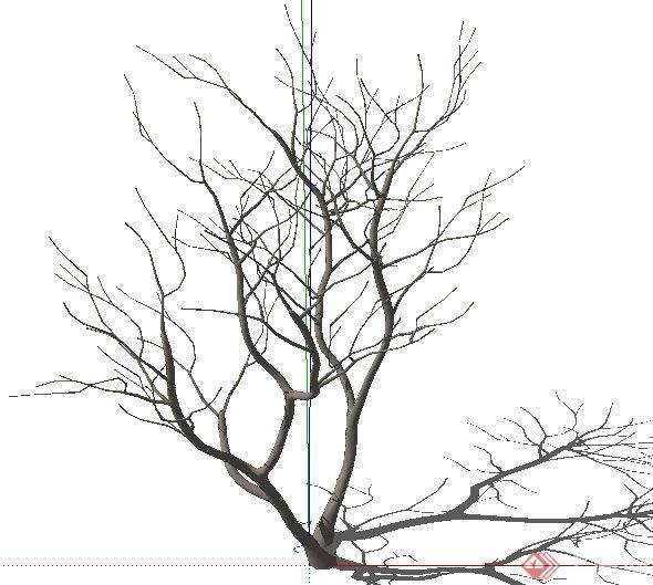 枯枝枯树素材su模型(1)