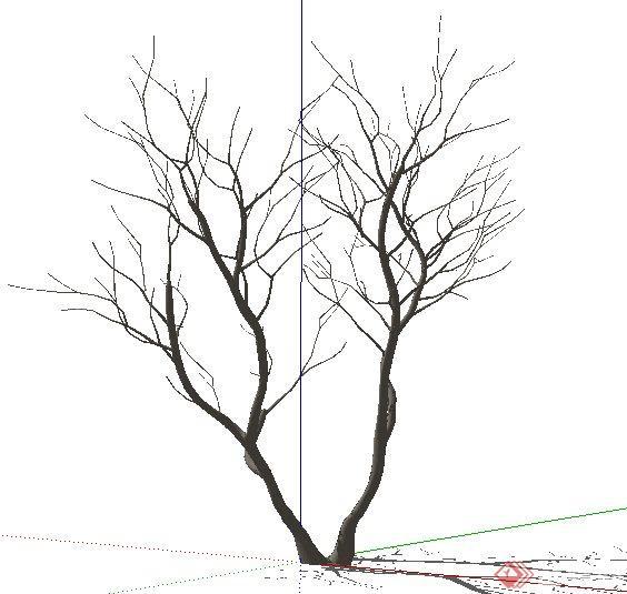 枯枝枯树素材su模型(2)