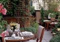 桌椅组合,餐具,植物墙,花架墙,庭院景观