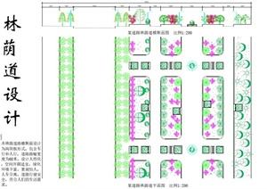 学生作业——林荫道设计方案图