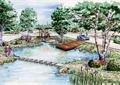 水池景观,汀步,木平台,乔木,道路景观