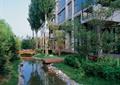 河流景观,卵石驳岸,草坪,木栈道,园桥,灌木丛,常绿乔木,住宅景观