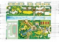 校园规划,校园景观,学校规划