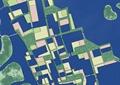 滨水景观规划,道路,植被