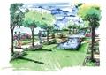 道路景觀,樹池,噴泉水池景觀,常綠喬木,花卉植物