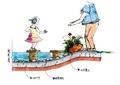 水上汀步,卵石水池,置石,花卉植物