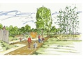 园路,木材铺装,景墙,常绿乔木