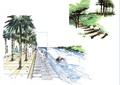 园路,台阶,常绿乔木,驳岸,水景