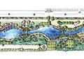 公园设计,生态公园,公园规划