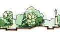 景观剖面,植物立面