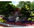 花坛,花卉植物,灌木植物,常绿乔木