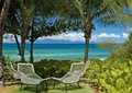 休閑椅子,熱帶植物,草坪