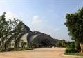 展览中心,展览馆,常绿乔木