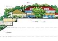 住宅建筑,景观树