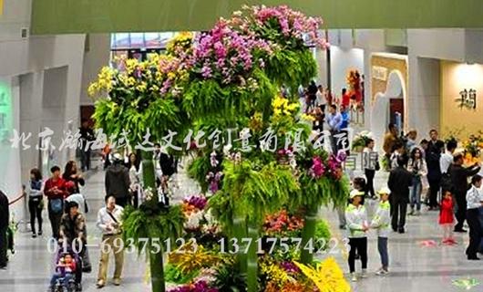 第四届中国兰花大会环境布置设计