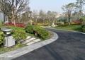 道路景观,垃圾桶,汀步,草坪灯,灌木丛,乔木