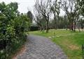 道路景觀,地面鋪裝,景觀樹,草坪景觀,草坪燈,庭院燈,汀步,住宅景觀