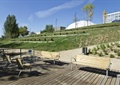 木平台,桌椅,园路,草坪,景观树