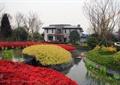 花坛,花池,水塘,种植池
