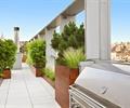 过道,花钵,地面铺装,观赏草,灌木植物,屋顶花园,庭院景观