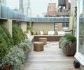 种植池,沙发,花钵,地面铺装,茶几,花灌木,露台花园,庭院景观,住宅景观