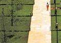 道路景观,草坪,汀步,乔木