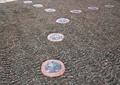 地面铺装,地面拼花,地面材料,路面做法