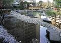 水池景观,景石,卵石驳岸,住宅景观