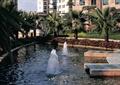 水柱,水柱水花,水景,水池,水池景观,喷泉,喷泉柱,喷泉池,喷泉水柱