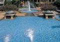 喷泉,水池,水景,水池喷泉,水池驳岸,喷泉水景