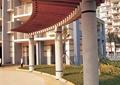 廊架,长廊,弧形廊架,木廊架