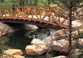 拱桥,木桥,桥,桥梁,桥廊,桥路