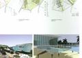 廣場,廣場景觀,景觀植物,喬木,建筑,城市規劃