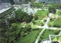 景观植物,广场景观,景观设计,道路景观,草坪