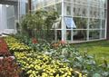 花卉植物,草坪,竹林,住宅景觀